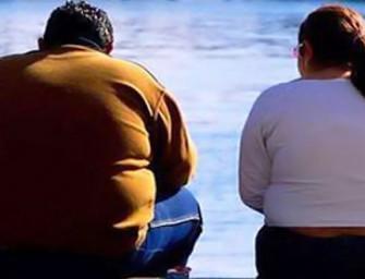 Hallan una proteína que podría prevenir el desarrollo de la diabetes inducida por la obesidad