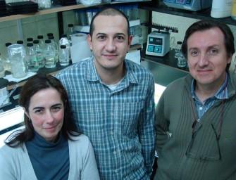 Científicos inventan detector rápido de metales tóxicos en agua