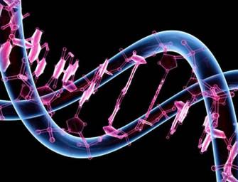 Mil euros por el genoma