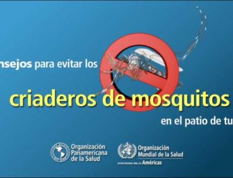 Zika—Cómo evitar los criaderos de mosquitos en tu patio
